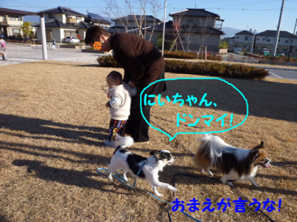 20101121-22.png