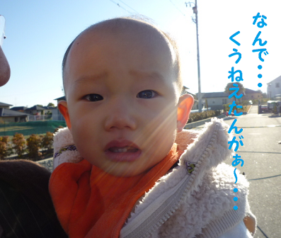 20101121-25.png