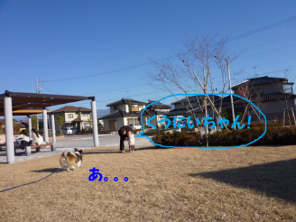 20101121-6.png