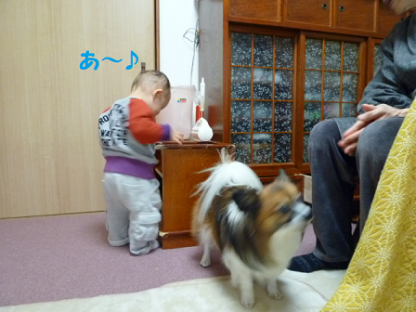 20101122-3.png
