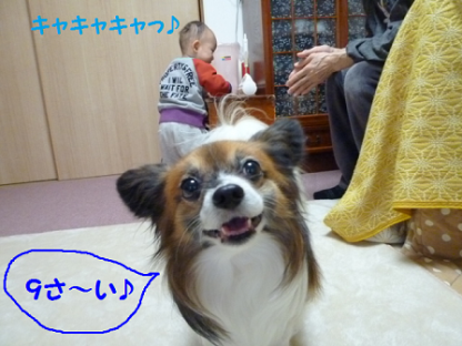 20101122-4.png