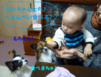 20101122-5.png