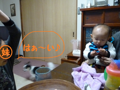 20101122-6.png