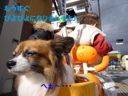 20101123-19.png