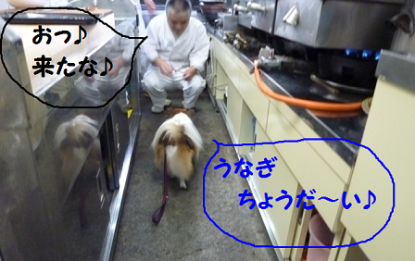 20101123-4.png