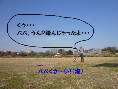 20101219-2.png
