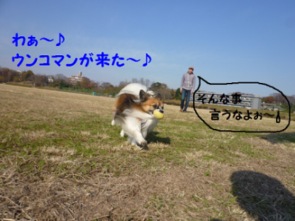 20101219-3.png