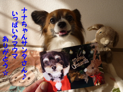 20101226-2.png