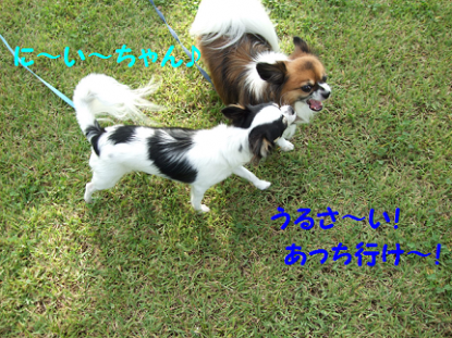 2010129-2.png