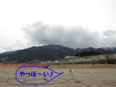 2010216-1.jpg