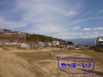 2010221-2.jpg