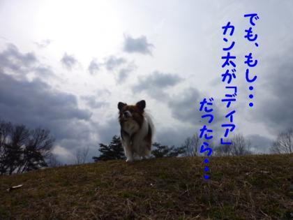 201034-8.jpg