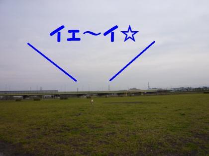 2010410-1.jpg