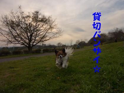 2010410-3.jpg