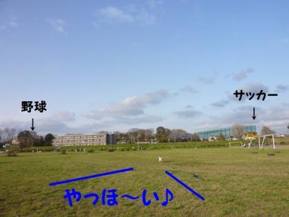 2010410-6.jpg