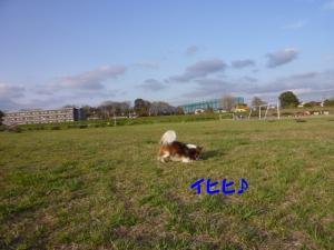 2010410-8.jpg