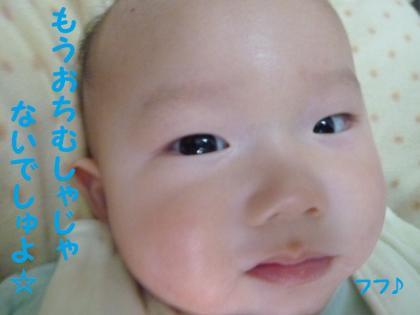 2010419-15.jpg