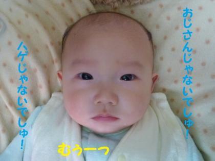 2010419-16.jpg