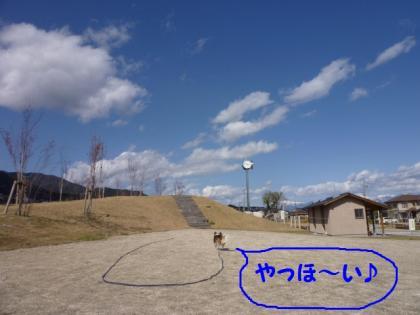 2010419-1.jpg