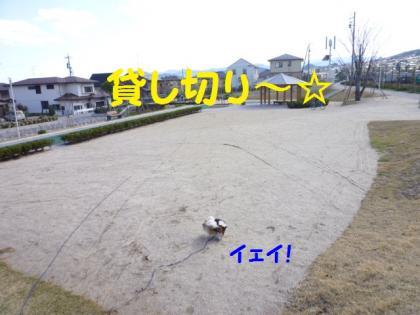 2010419-2.jpg