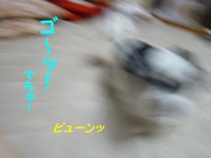 2010420-10.jpg