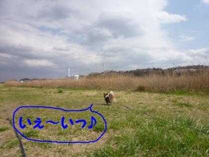 201043-1.jpg