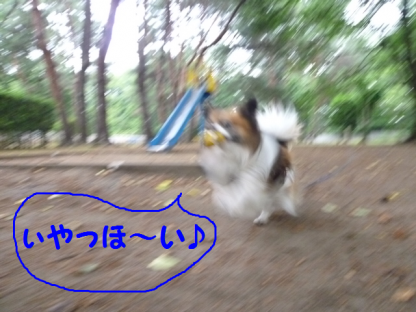 2010618-3.png