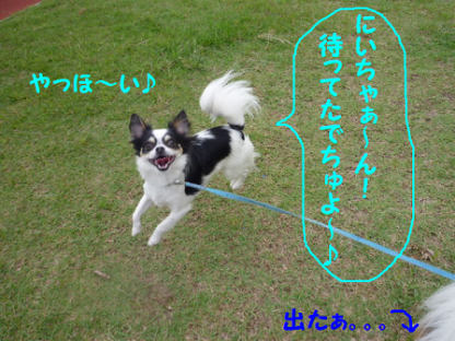 2010627-5.png