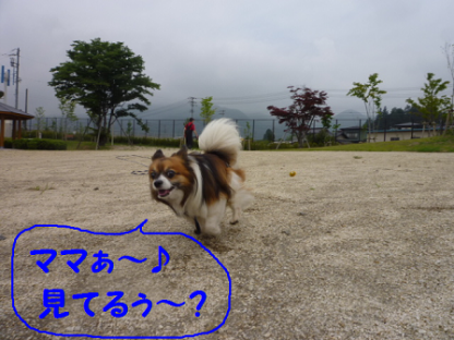 2010630-5.png
