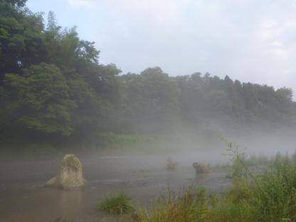 201074-9.jpg