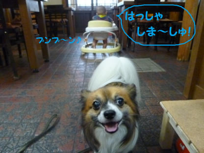 2010812-2.png