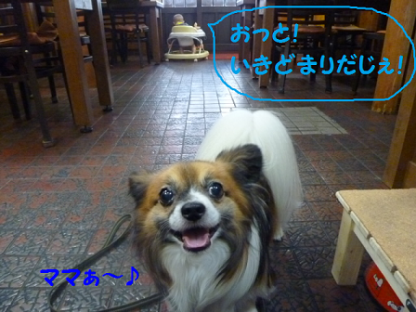 2010812-3.png