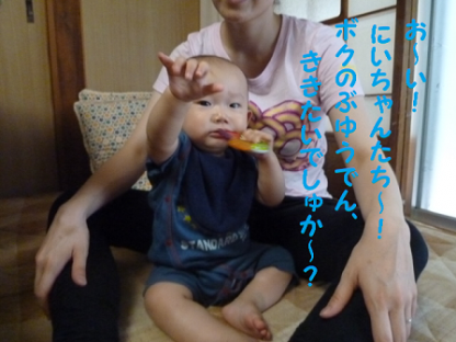 2010812-7.png