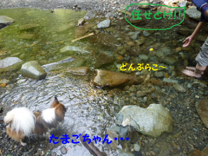 2010816-17.png