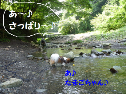 2010816-23.png