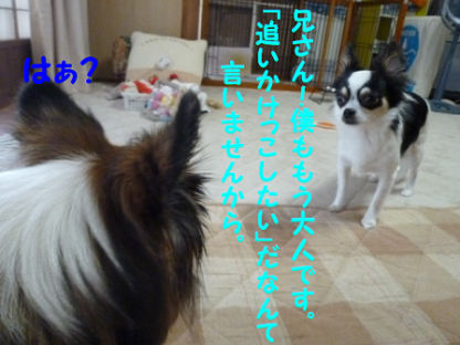 201089-6.png
