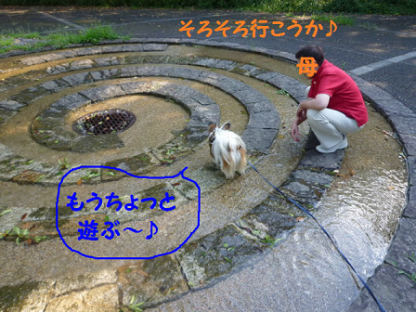 201091-11.png