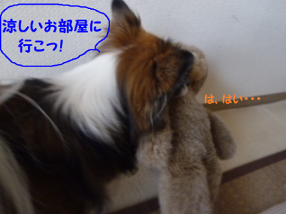 2010917-6.png