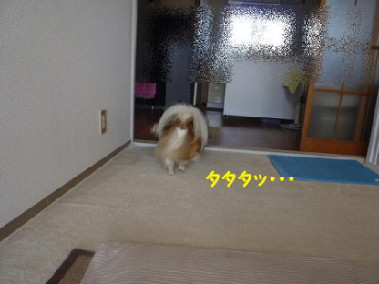 2010917-7.png