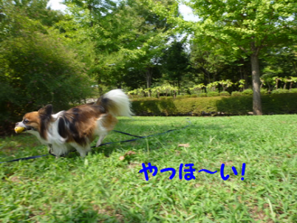 2010919-5.png