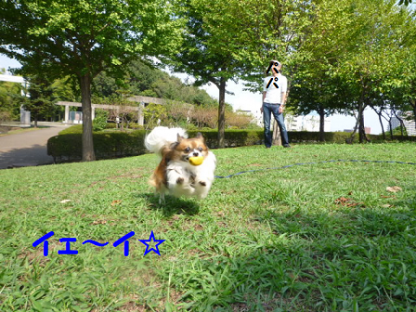 2010919-6.png