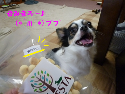201092-6.png