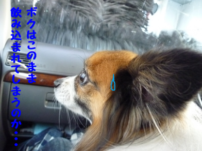 20111210-4.png
