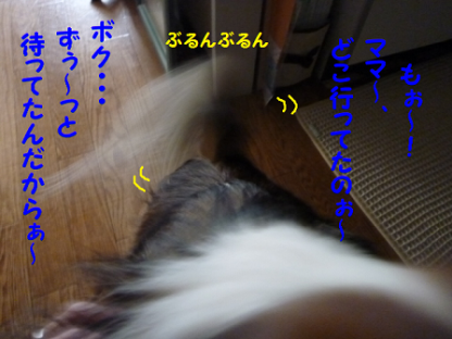 201127-3.png
