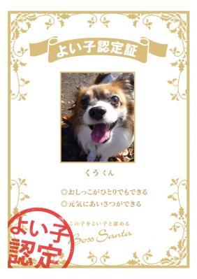 certification_98233738.jpg