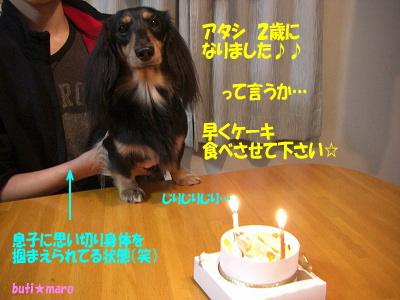 ケーキ下さい!