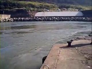 八丈島にとどいた津波 2009年1月4日、ニューギニア<br /><br />地震による津波