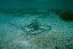 遠地津波観測計(海底センサー部)