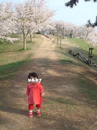 竜王山baby