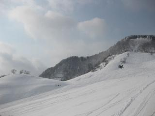 201001031_snow